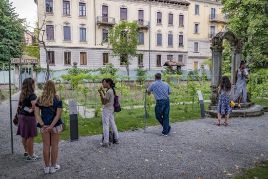 Milaan_tuin-da-vinci-wijngaard