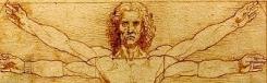 Net zo knap als Da Vinci